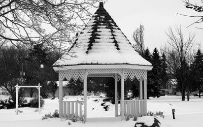 How to protect your garden during the winter months